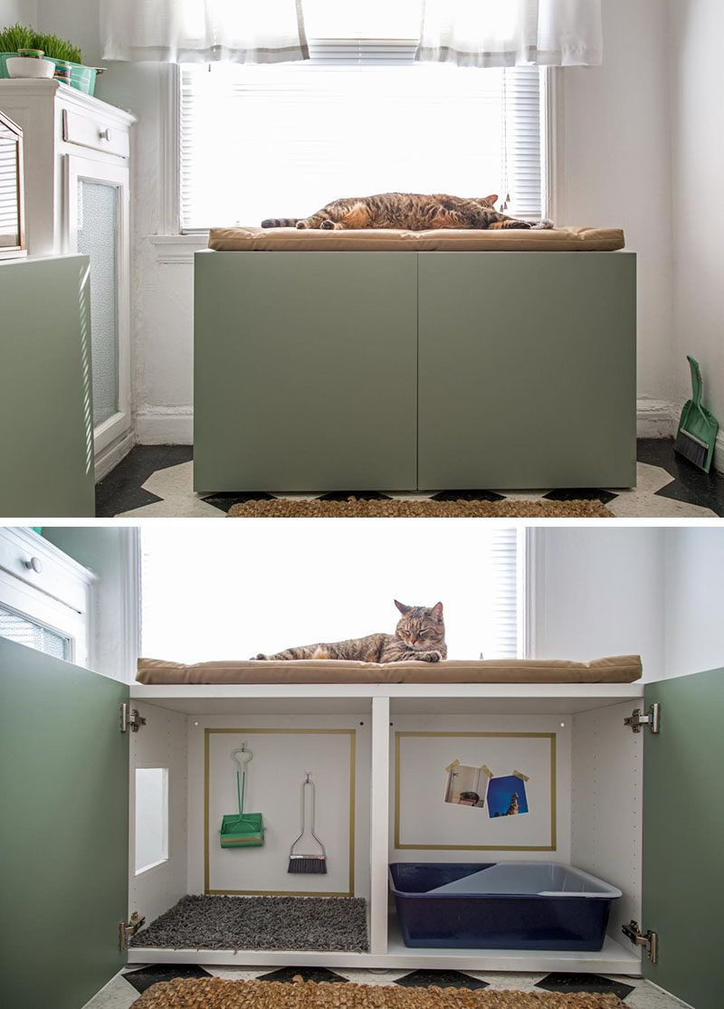 Popular Cat Litter Box Furniture Ideas