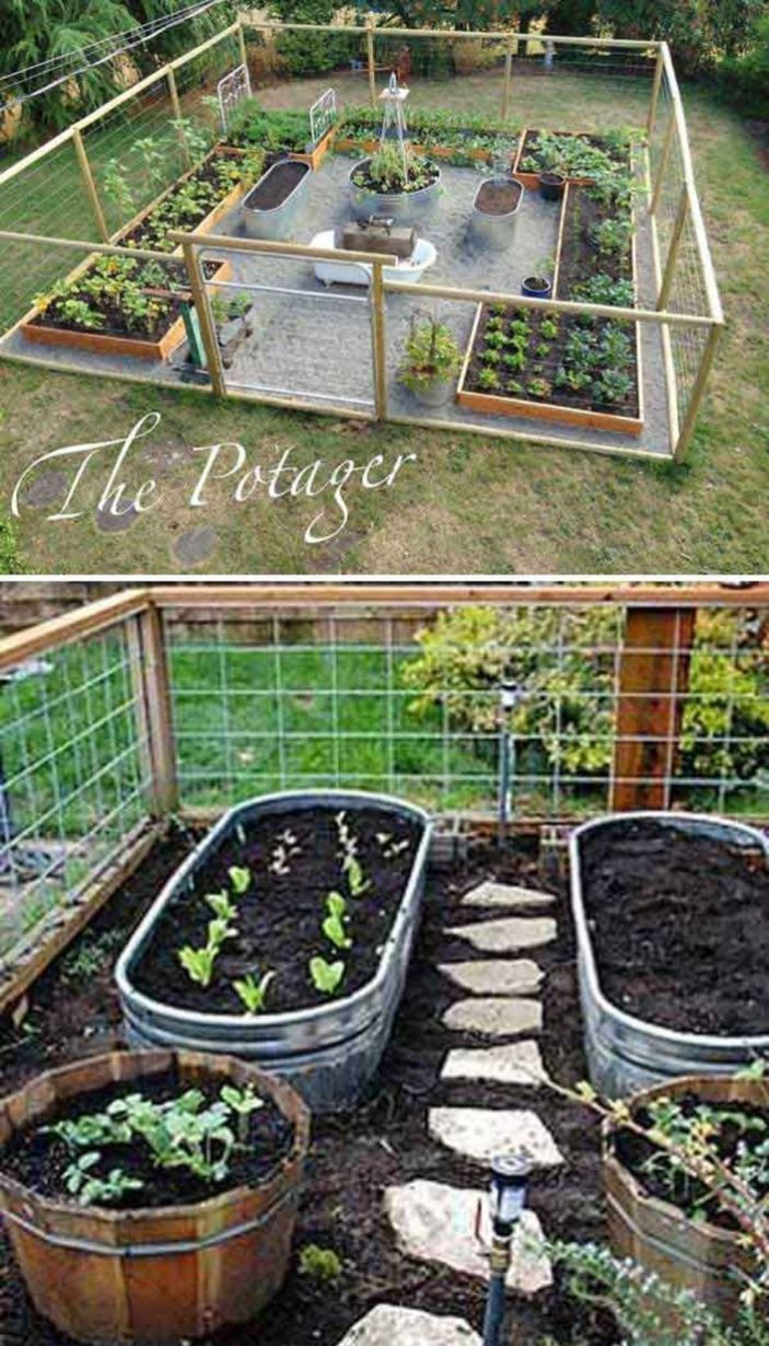 Affordable Simple Vegetable Garden Ideas