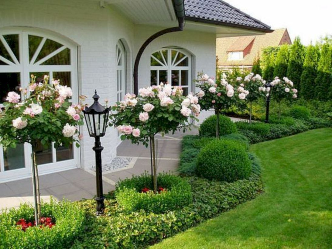 Awesome Rose Garden Ideas For Front Yard Ideas