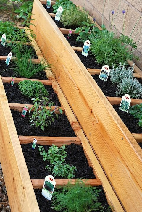 Popular Raised Herb Garden Ideas