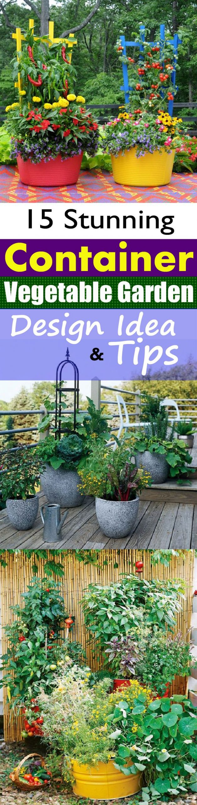 Stunning Potted Vegetable Garden Ideas