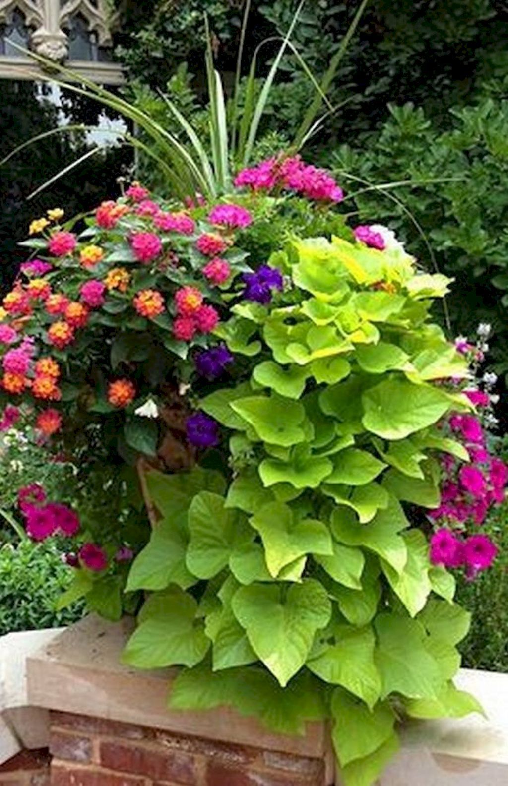 Beautiful Container Flower Garden Ideas