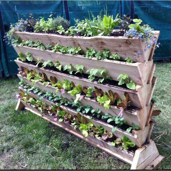 The Best Space Saving Vegetable Garden Ideas